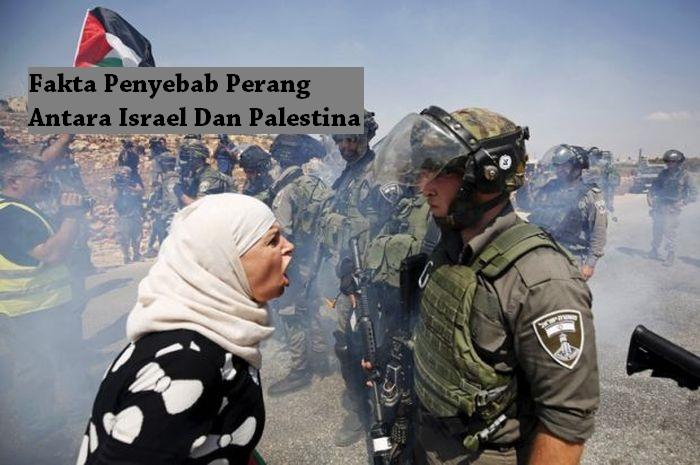 Fakta Penyebab Perang Antara Israel Dan Palestina